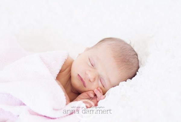 Valokuvaaja Anna Dammertin valokuva vastasyntyneestä vauvasta