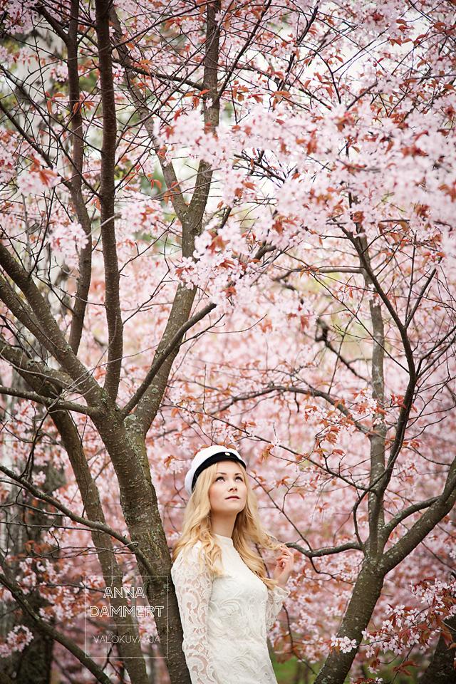 Ylioppilaskuva nuoresta naisesta kukkivien kirsikkapuiden alla