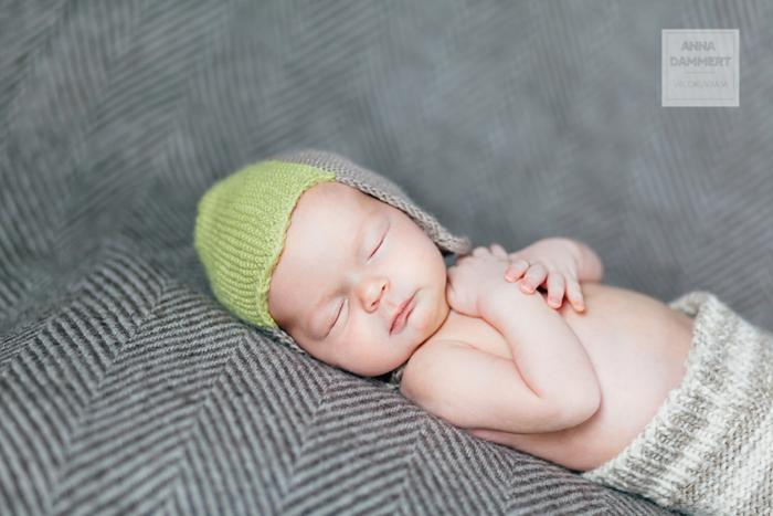 Vastasyntyneen valokuvaus kotona, vauvakuvaus 7-10 päivän ikäisenä, Valokuvaaja Anna Dammert